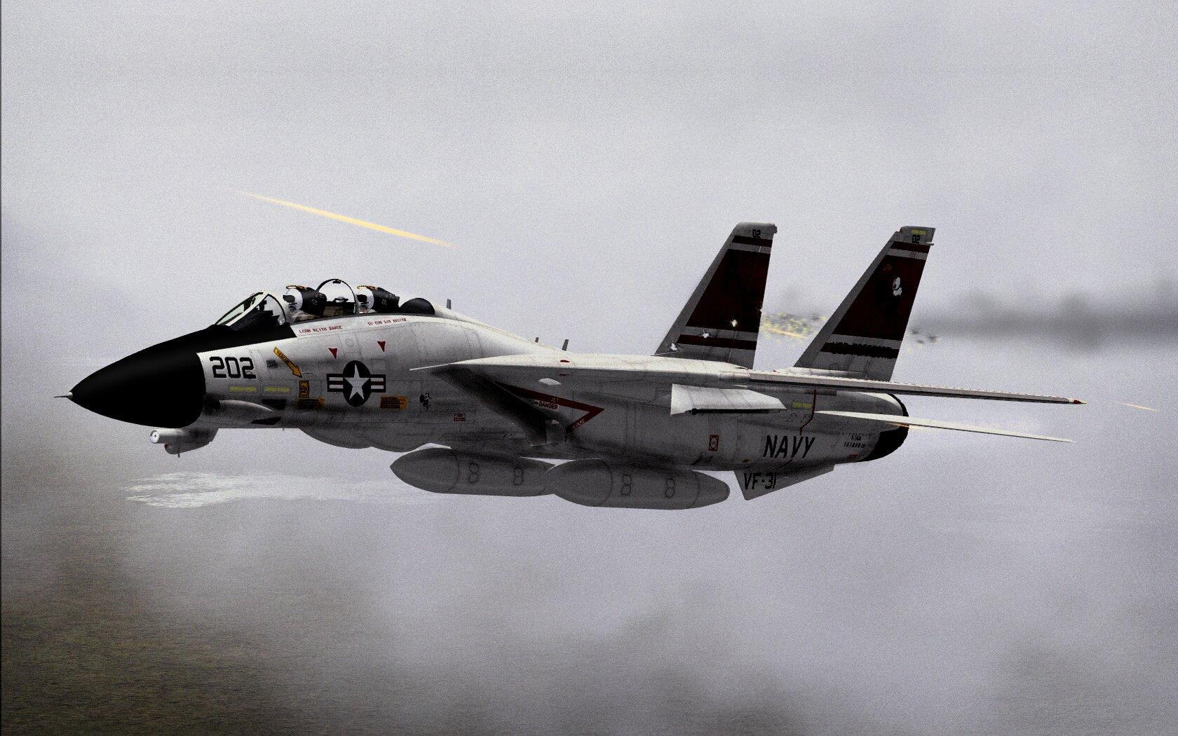 F 14 Super Tomcat F14_Tomcat_gets_shot_b...