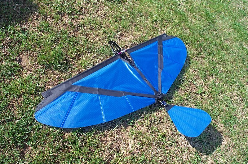 Ornithopter slow hawk 2