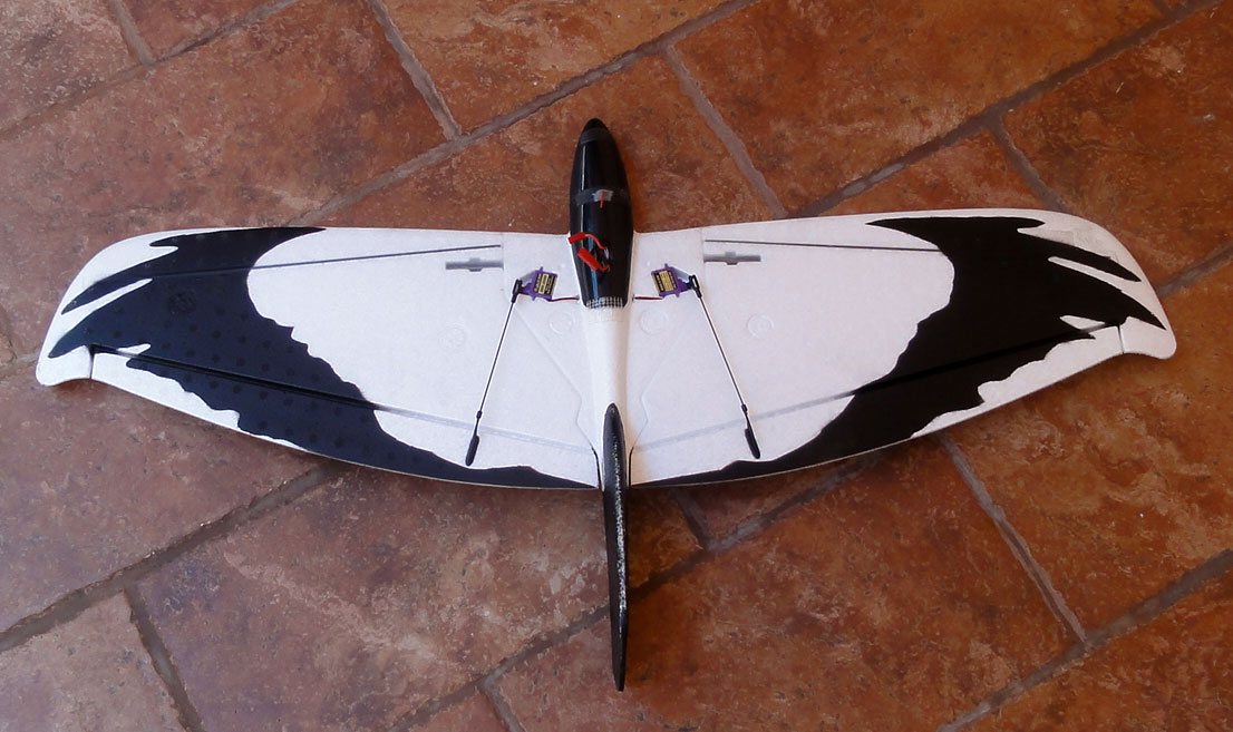 Alula Evo glider