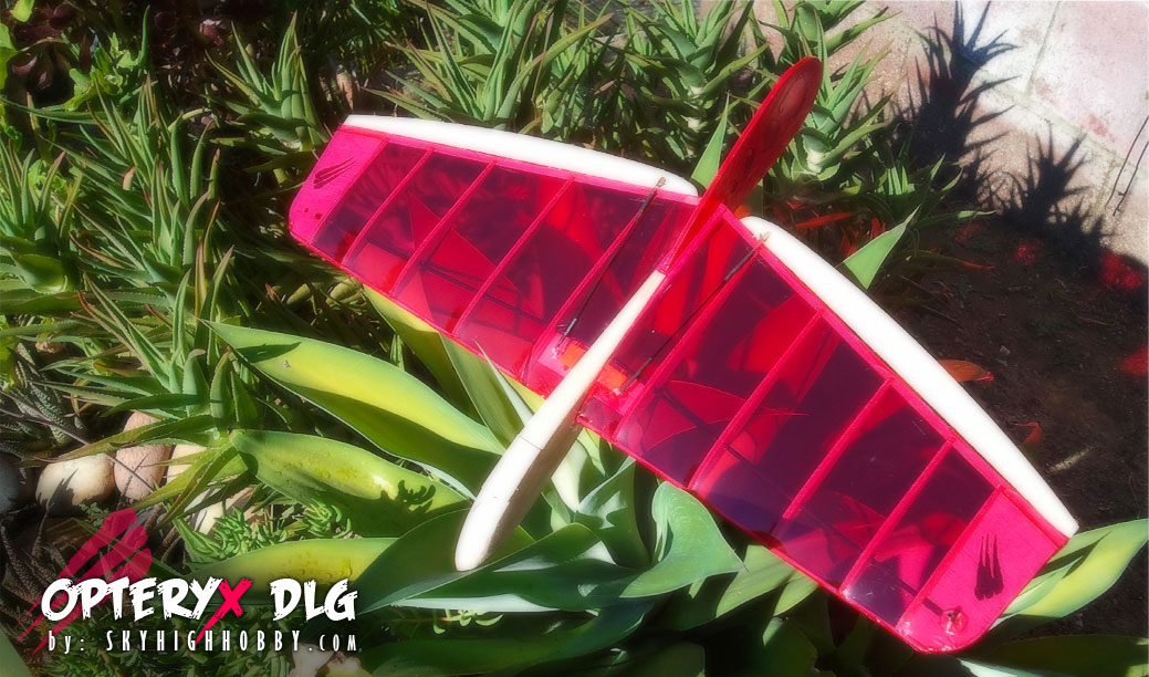 micro HLG hand RC glider